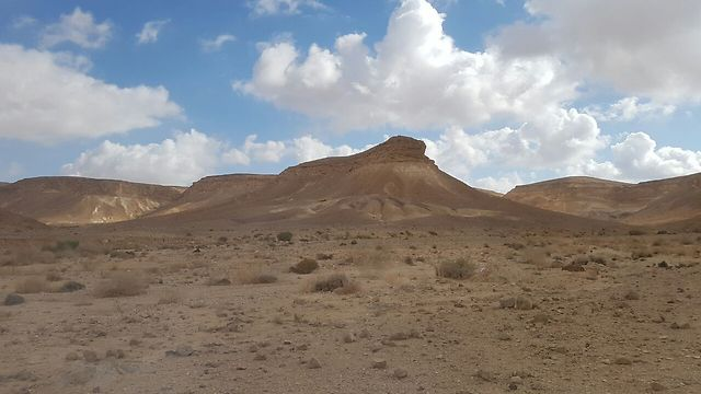 הר כרכום (צילום: אסף קמר)