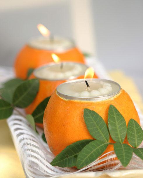 תפוז מאיר (צילום: אורית זילברמן)