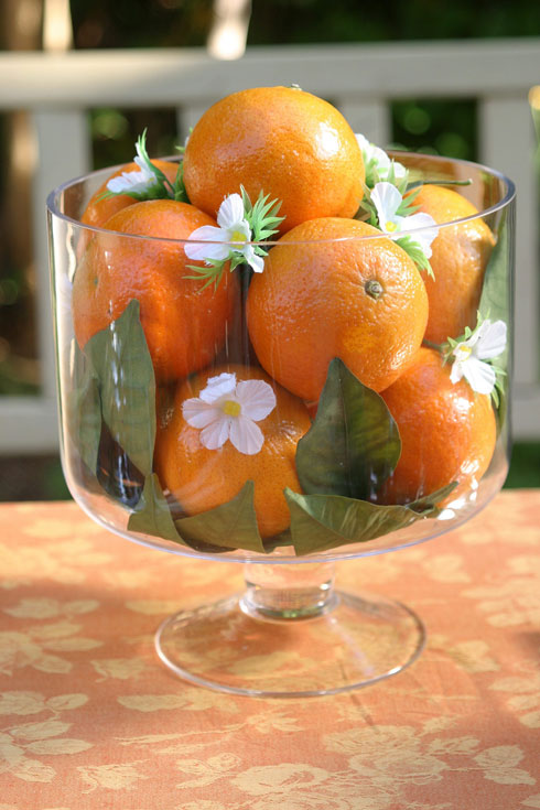 חג של כל הפירות, לא רק המיובשים (צילום: אורית זילברמן)