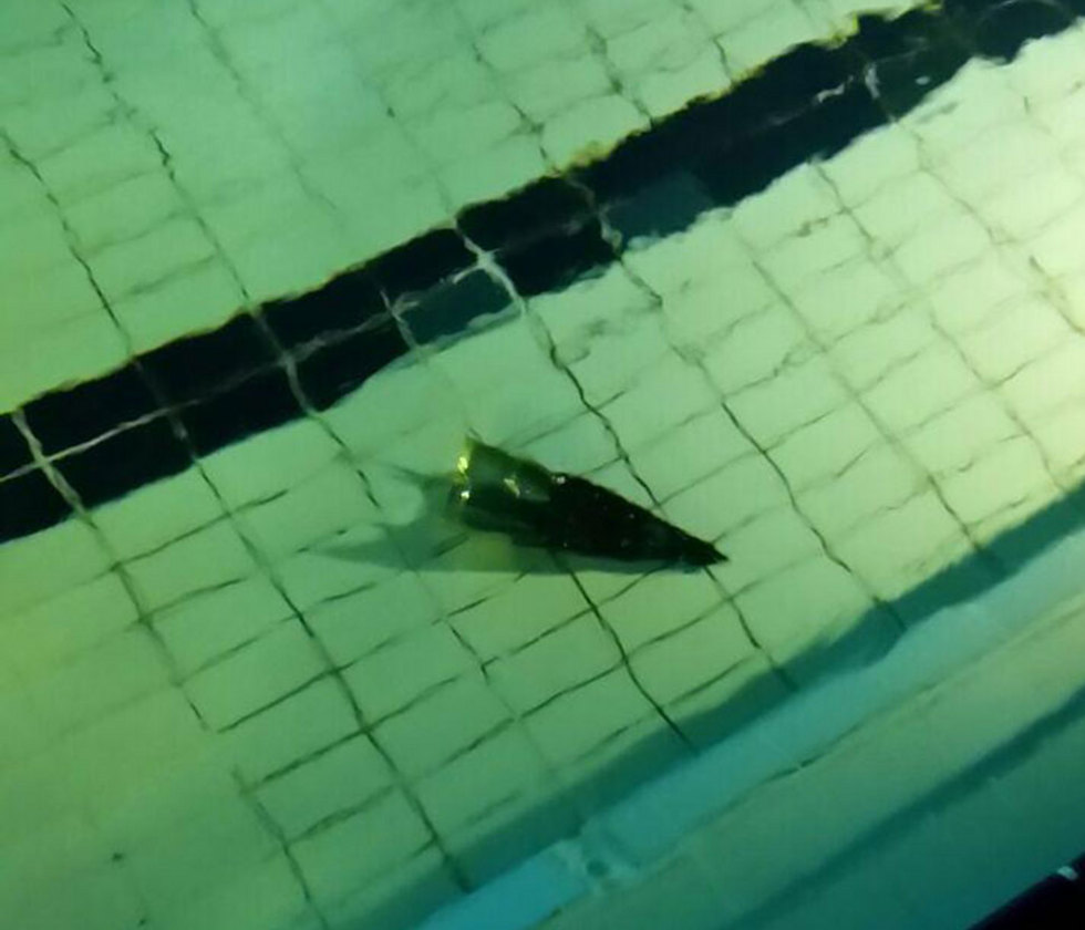 Shell following interception lands in a hotel swimming pool