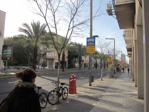 הרחוב המוצל: הקולונדות באבן גבירול באו לשרת רעיון חברתי, מבחינת המהנדס (צילום: נעמה ריבה)