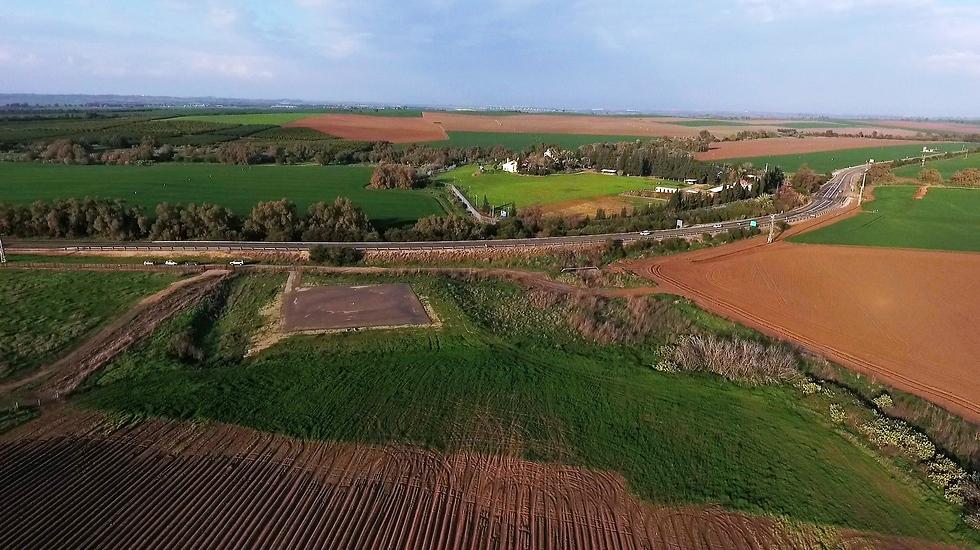 חוות השקמים (צילום: אלי סגל)
