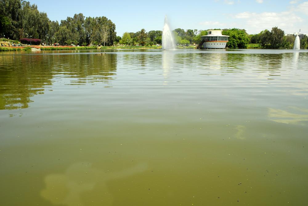 Парк Леуми в Рамат-Гане. Фото: shutterstock