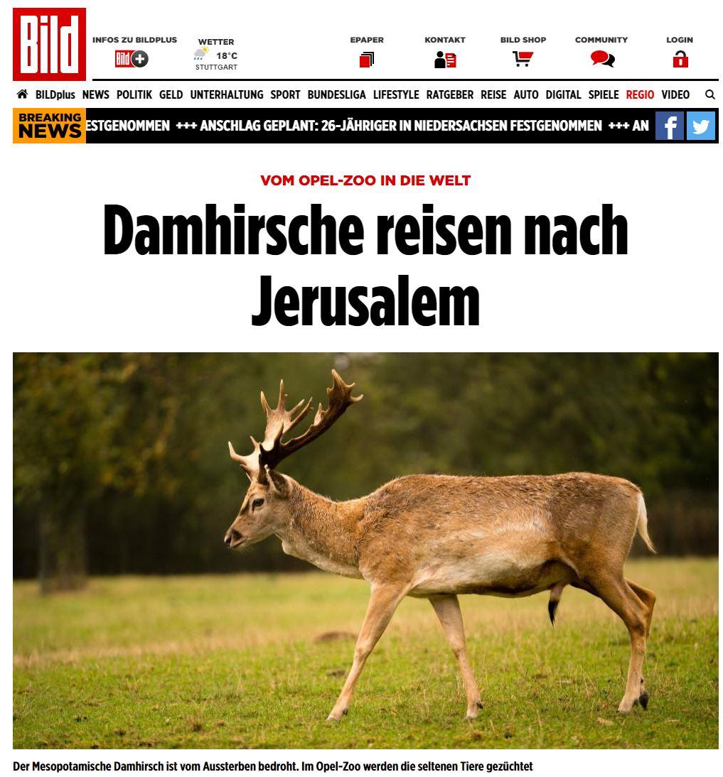 (מתוך אתר החדשות הגרמני Bild)