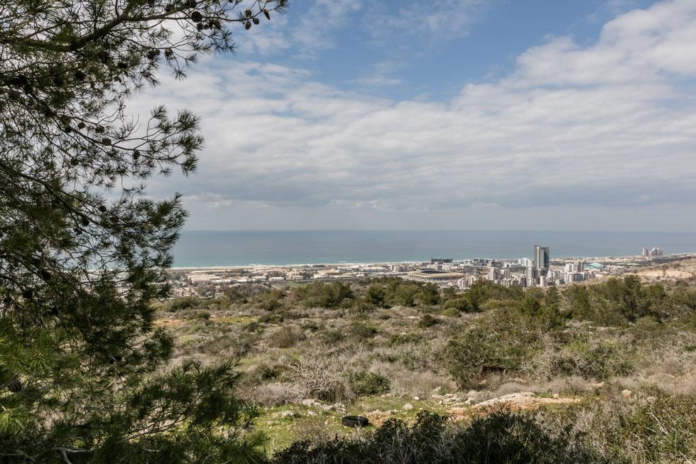 """מבט מהגבעה אל חוף הים. """"יש בחיפה 4,500 דירות נטושות, אוכלוסיית העיר לא גדלה, אז בשביל מה צריך את השכונה החדשה?"""" שואל אחד מפעילי העמותה (צילום: אינסה ביננבאום)"""