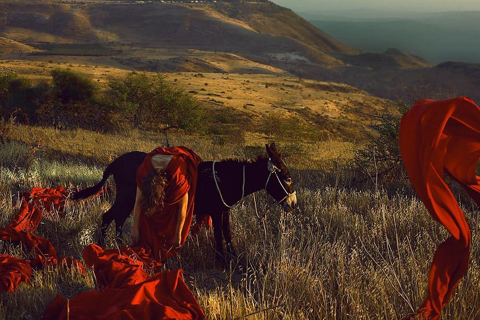 פילגש בגבעה (צילום: דיקלה לאור)