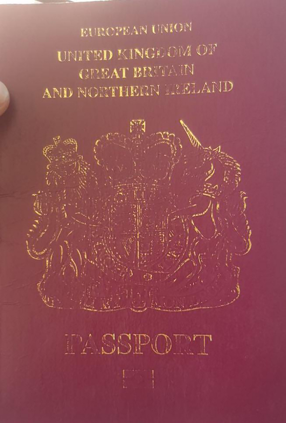 The tourist's passport