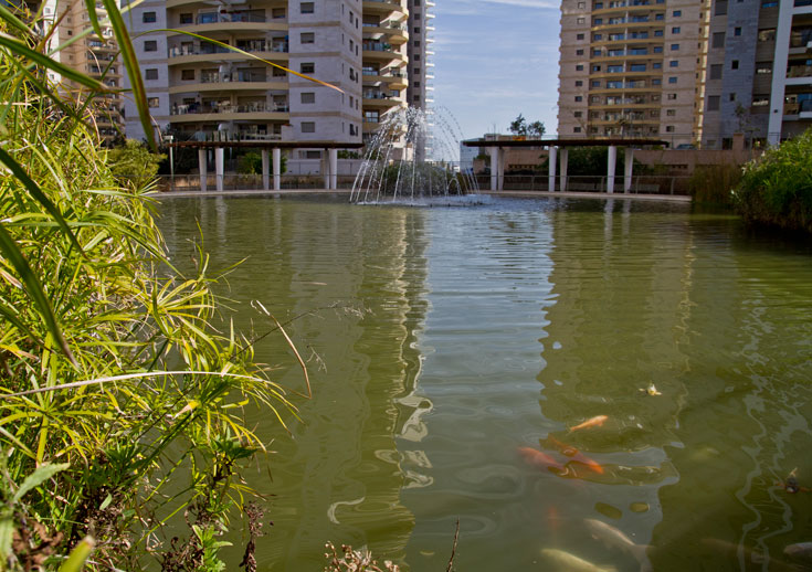 האגם בגינה המרכזית. לשם השוואה: בשכונות של ראשל''צ מערב הגנים גדולים כמעט כפליים (צילום: יניב ברמן)