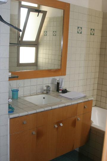 חדר האמבטיה לפני השיפוץ (צילום: הגר יואלי  )