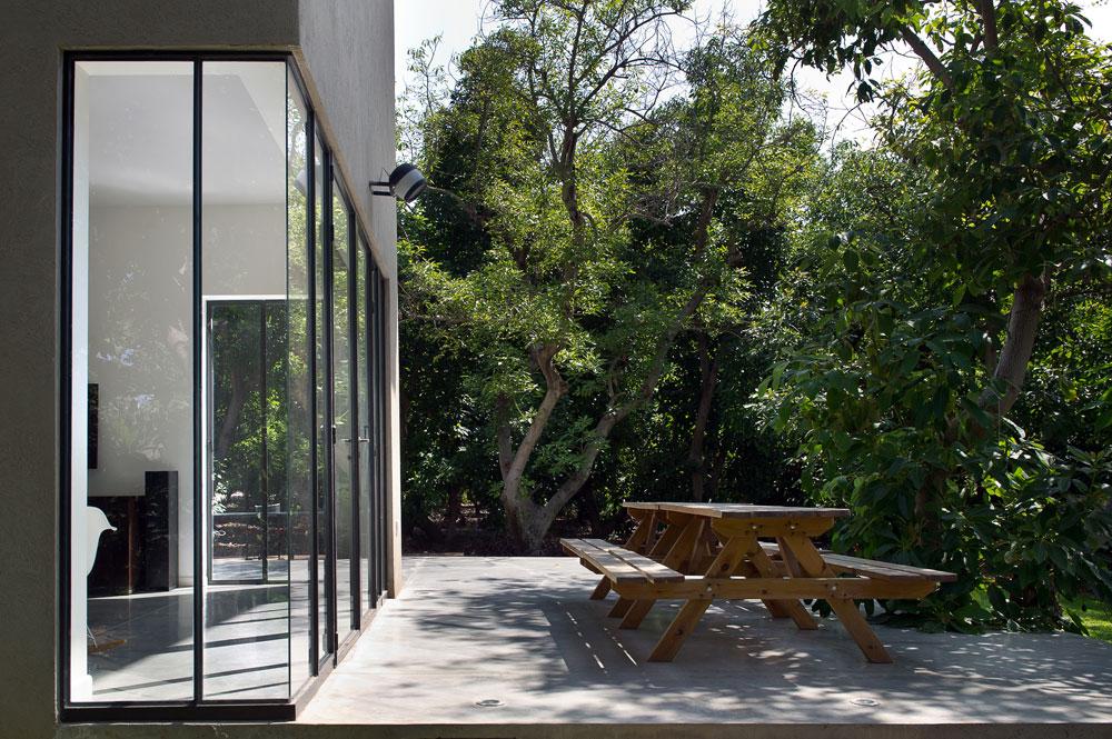 לצורניות הלא עקבית של המבנה יש שתי סיבות: האחת היא הסגנון שנבחר והשנייה היא רצונם של בני הבית לשמור על כמה שיותר מהעצים הוותיקים שהיו בחלקה, שאותם מטפח סב המשפחה (צילום: עמית גושר)