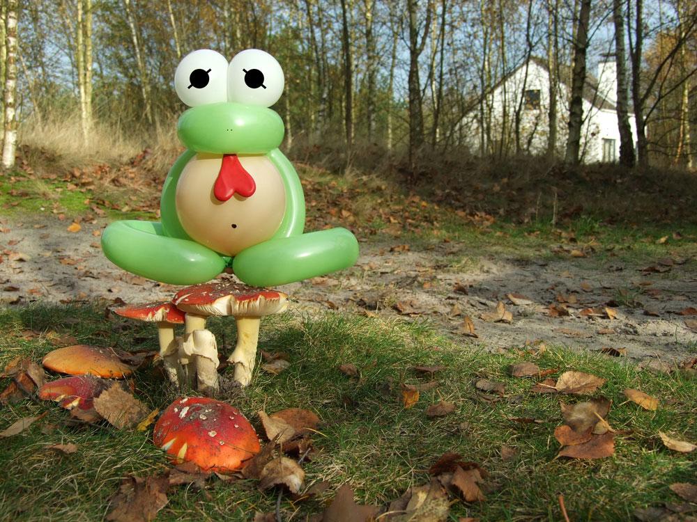 צפרדע מבלונים/ עיצוב: ברק דגן (צילום: ברק דגן)