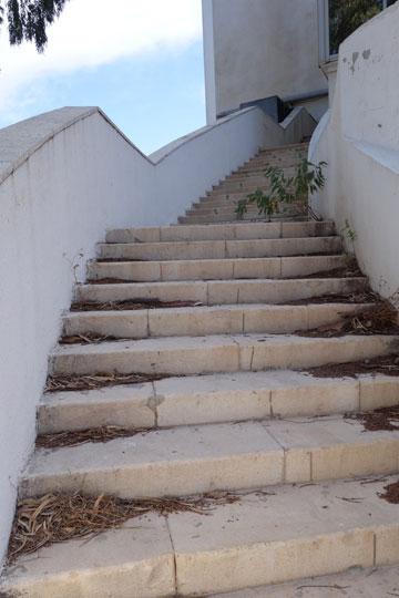 גרם המדרגות של מלון הר הכרמל. קישר בין הגן לבין חדר האוכל והלובי (צילום: מיכאל יעקובסון )