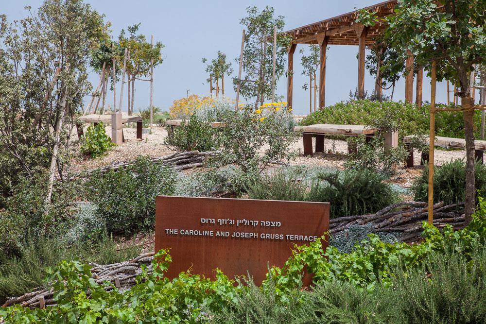 בפארק נעשות וייעשו פעילויות מיחזור ושיקום (צילום: טל ניסים)