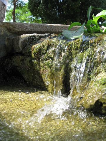 מים מפכים ב''גאון דרכא'' (באדיבות רשת דרכא)