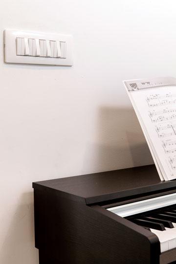 פסנתר חשמלי ו''אורגן מפסקים'' (צילום: איל תגר )