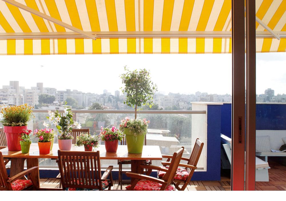 טיח כחול על קיר המרפסת, אריחי איפאה על הרצפה, עציצים צבעוניים על השולחן, מרקיזה בצהוב ולבן ונוף פתח תקוואי מלוא העין (צילום: אפרת לוזנוב)