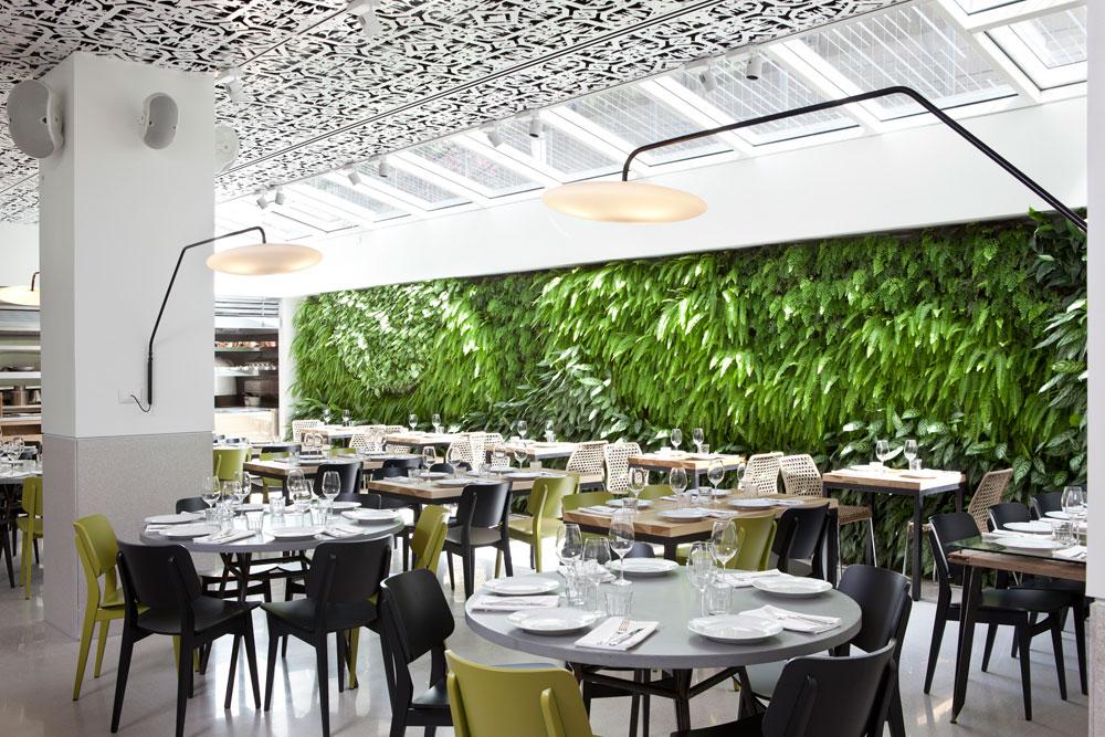 קירות ירוקים הם גם יפים וגם אפקטיביים. קיר המסעדה והלובי של מלון ''מנדלי'' בתל אביב, בעיצובם של אלון ברנוביץ' ואירנה קרוננברג (לחצו לצפייה) (צילום: עמית גרון)