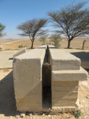 אביו של קרוון השתתף בעיצוב הנוף אבל לא זכה לראות את האתר נחנך (צילום: מיכאל יעקובסון)