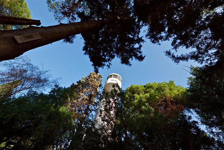 הקווים המעוגלים וראשו של המגדל מזכירים את סגנונו של האדריכל היהודי-גרמני אריך מנדלסון, שהשפיע עמוקות גם על העיר הלבנה של תל אביב (צילום: איתי סיקולסקי)