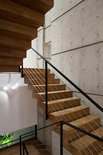 מגרעת לאורך קיר הבטון בחלל המדרגות מאפשרת להציץ לחלל אחר בבית (צילום: עמית גרון )