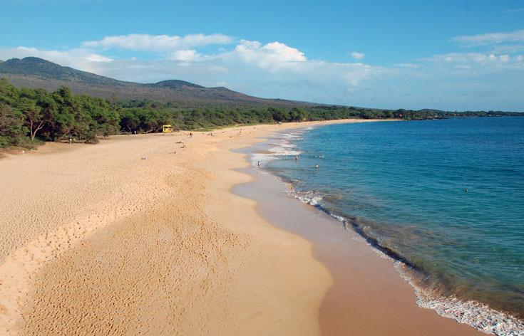 Little Beach במאווי. שוחים עם דולפינים ( צילום: peyri, cc )