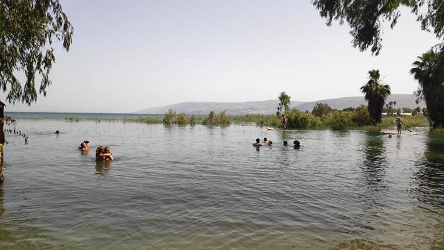 אחרי שנתניהו התעלל בשקד ובנט איילת 'קד מנהיגת הטליבאן מרוב יאוש קפצה למים לבושה כמו באפגניסטן או איראן 99858040991590640360no