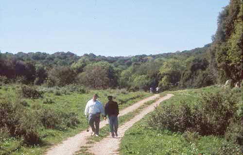 הר חורשן - תהנו (צילום: דפנה מרוז, החברה להגנת הטבע) (צילום: דפנה מרוז, החברה להגנת הטבע)