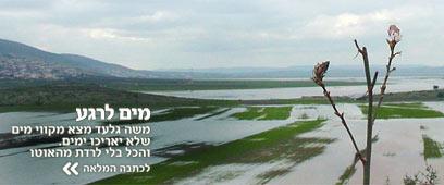 צילום: סולימאן אבוגוש