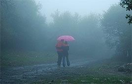 גשם. צילום: רינה נגילה