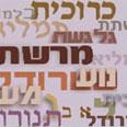 Ynet photo