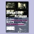 """""""חופשה בים הצפוני: אמנות בעידן הפוסט-מדיומלי"""" (2000)"""