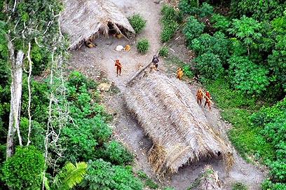 חיים על גדות האמזונס בדרום פרו (צילום: AFP) (צילום: AFP)