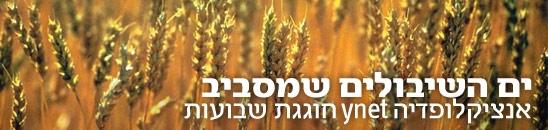 שבועות, אנציקלופדיה ynet. צילום: ויזואל / פוטוס