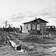 צריף מגורים בשנות השפל