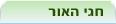 חגי האור. חנוכה, חג המולד, דיוואלי. אנציקלופדיה Ynet