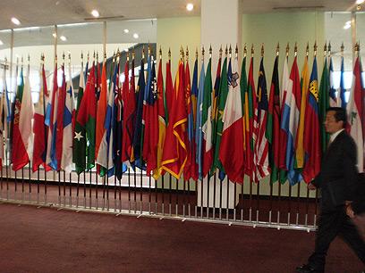 בקרוב דגל פלסטין? (צילום: דנה צימרמן) (צילום: דנה צימרמן)