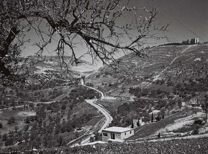 צפת הר כנען 1947 (צילום: זולטן קלוגר, לע:מ) (צילום: זולטן קלוגר, לע:מ)