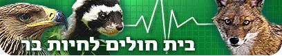 בית חולים לשיקום חיות בר