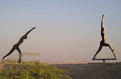 """ברח לערבה. אבל גם שם מצאו אותו (צילום: טלילה ליבשיץ, קק""""ל) (צילום: טלילה ליבשיץ, קק"""