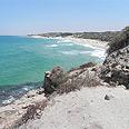 חוף פלמחים צילום: זיו ריינשטיין