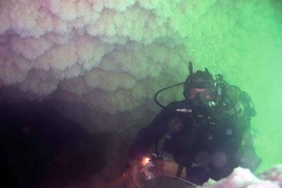 המערה נחשפת. צלילה בים המלח (צילום: תום פלד) (צילום: תום פלד)