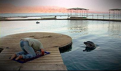 """""""הדולפין"""". הנפש ננעלה בתוך עצמה ()"""