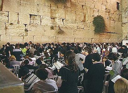 מתפללות מעבר למחיצה  (צילום: אלי מנדלבאום) (צילום: אלי מנדלבאום)