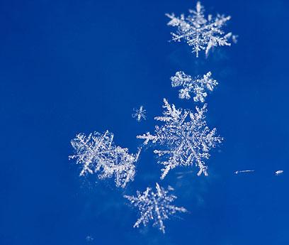 איך נוצר פתית שלג? (צילום: shutterstock) (צילום: shutterstock)