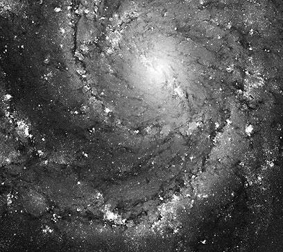 """גלקסיה M101 (צילום: טלסקופ החלל ע""""ש האבל, NASA) (צילום: טלסקופ החלל ע"""