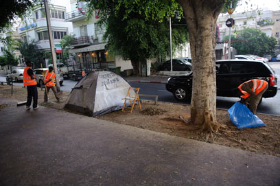מנקים את השדרות מאוהלים  (צילום: בן קלמר)