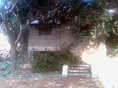"""הבית ברחוב הכנסת 5: """"וילה"""" עם שני חדרים (צילום: תני גולדשטיין) (צילום: תני גולדשטיין)"""