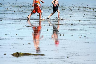 הרגל הבאה בדרך? ילדים בחופי ונקובר (צילום: shutterstock) (צילום: shutterstock) (צילום: shutterstock)