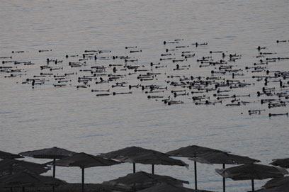המיצב בים המלח. מחלוקות וחוויות שונות (צילום: ירון ברנר) (צילום: ירון ברנר)