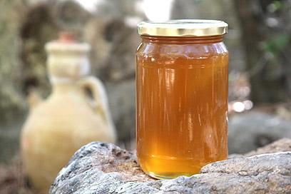 בדקו אם הדבש מתגבש, אם כן, זה אומר שהוא איכותי (צילום: אסף רונן)